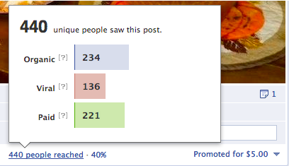 How to Create Facebook Promoted Posts
