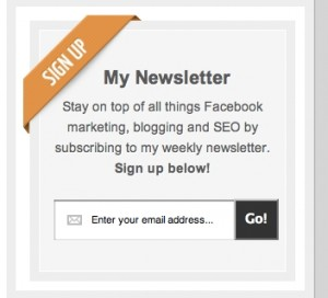 Custom WordPress Widget Newsletter