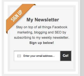 Custom WordPress Widget Newsletter