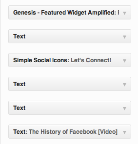 Text WordPress Widgets