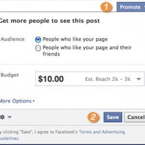 Facebook Promoted Posts