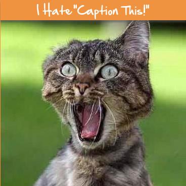 i-hate-caption-this