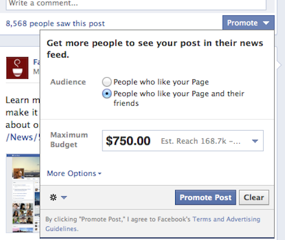 Facebook Promoted Posts Fans or Friends of Fans