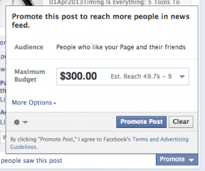 Mari Smith Facebook Promoted Post Fans plus Friends of Fans