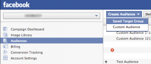 Create Saved Audience Facebook Power Editor