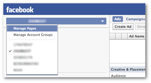 Facebook Power Editor Manage Pages