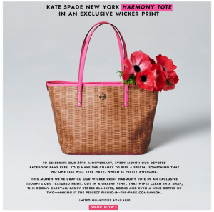 Kate Space Exclusive Offer