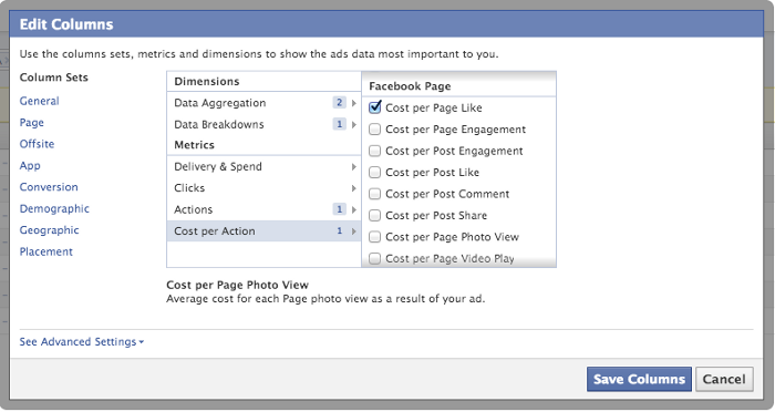 Facebook Ad Reports Cost Per Action