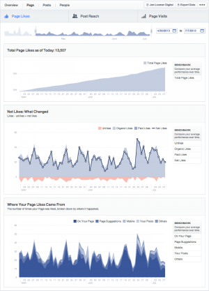 Facebook Insights Page Tab Page Likes