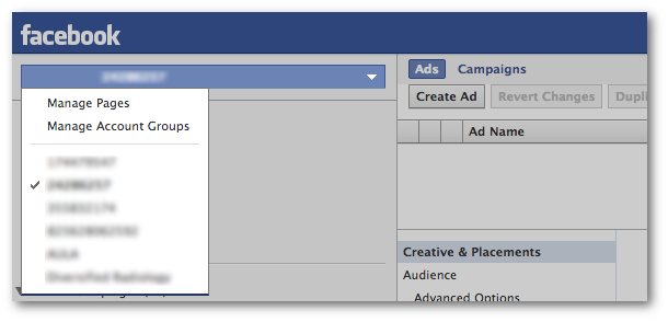 Facebook Power Editor Ad Accounts
