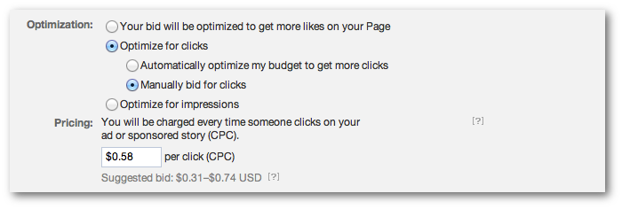 Facebook Self-Serve Ad Tool Bid Options