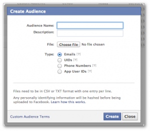 Facebook Power Editor Create Audience Name