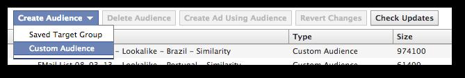 Facebook Power Editor Create Audience