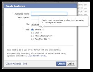 Facebook Power Editor Custom Audience Email Addresses