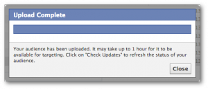 Facebook Power Editor Custom Audiences Wait 1 Hour