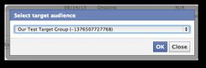 Facebook Power Editor Select Saved Target Group
