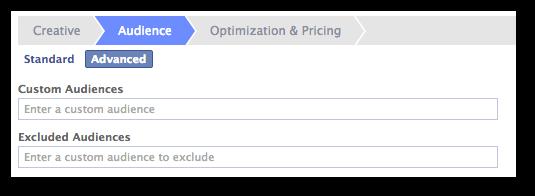 Facebook Power Editor Enter Custom Audience