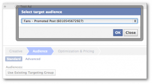 Facebook Power Editor Use Existing Targeting Group