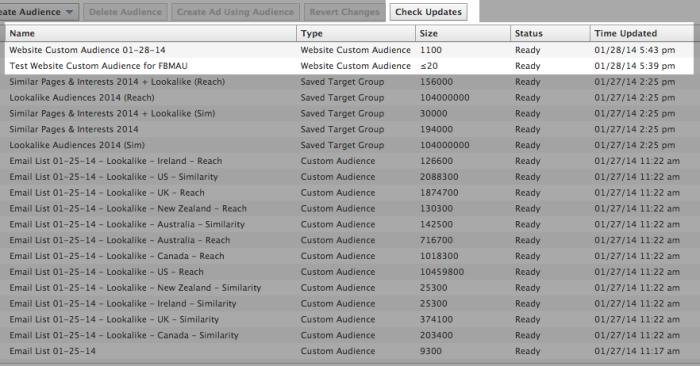 Facebook Website Custom Audience List in Power Editor