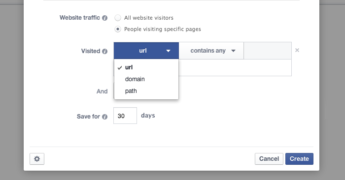Facebook Website Custom Audience URL Domain Path