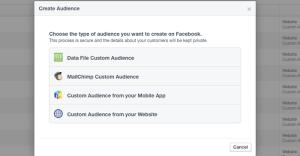 Facebook Website Custom Audiences Step 16