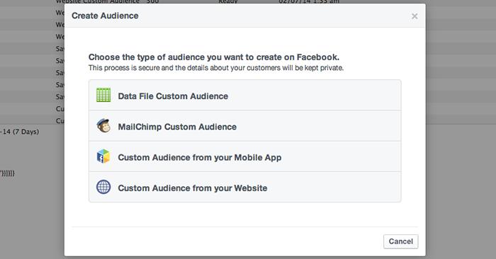 Facebook Website Custom Audiences Step 2