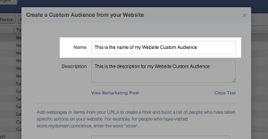 Facebook Website Custom Audiences Step 5