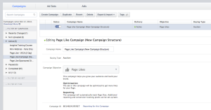 Facebook Campaign Example
