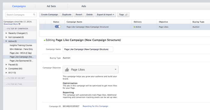 facebook campaign example 700x366 Facebook Advertising Campaign Structure: A Hands On Tour