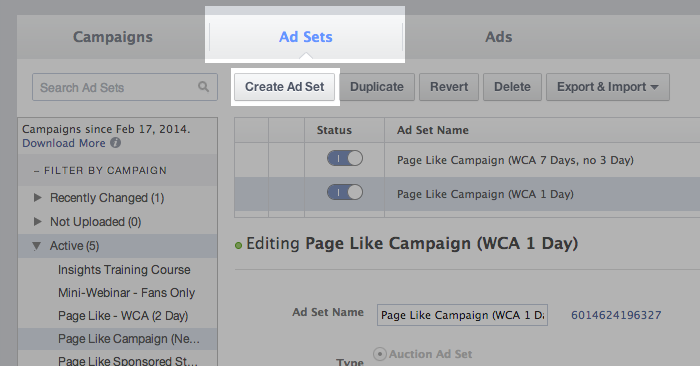 Facebook Campaign Structure Create Ad Set