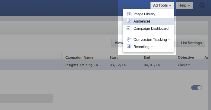 Facebook Power Editor Ad Tools Audiences