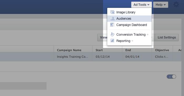 Facebook Power Editor Ad Tools Audiences