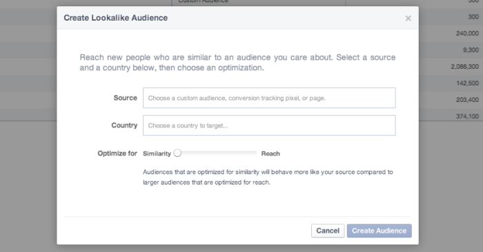 Facebook Power Editor Create Lookalike Audience