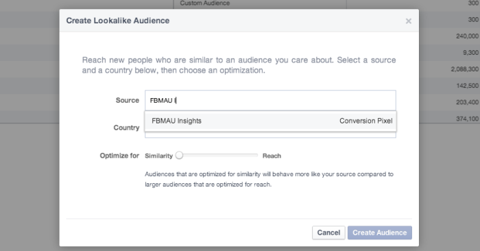 Facebook Power Editor Create Lookalike Audience Conversion Pixel
