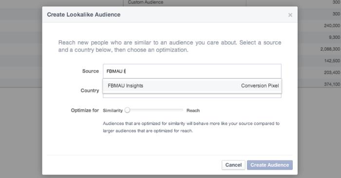 Facebook Power Editor Create Lookalike Audience Conversion Pixel