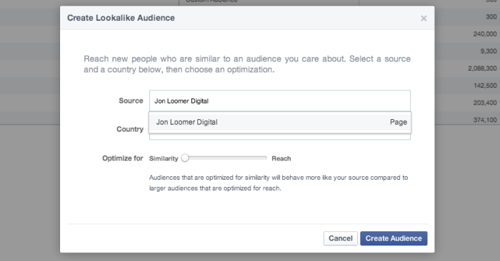 Facebook Power Editor Create Lookalike Audience Page
