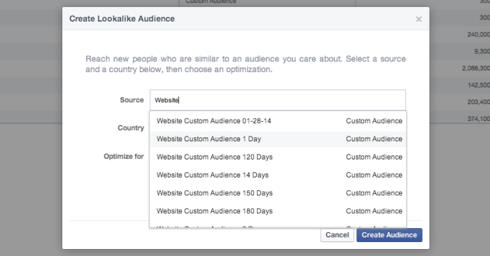 Facebook Power Editor Create Lookalike Audience WCA