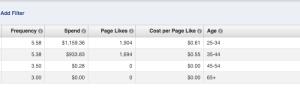 Facebook Ad Reports Edit Columns Age