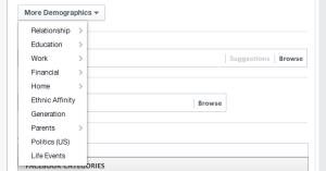 Facebook More Demographics