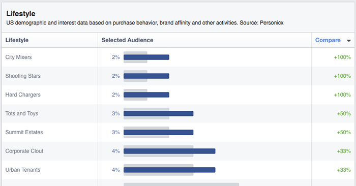 Facebook Audience Insights Demographics Lifestyle
