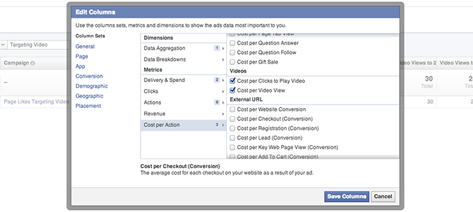 Facebook Ad Reports Cost Per Action Video