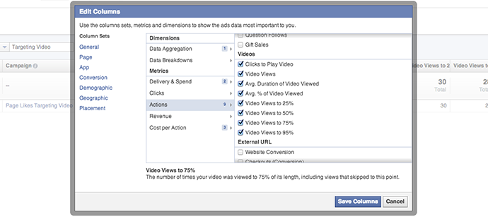 Facebook Ad Reports Video Actions