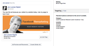 Facebook Page Like Campaign Website Custom Audience 1 Day