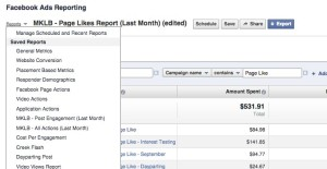 Facebook Ad Reports Saved Reports