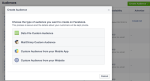 Facebook Create Audience
