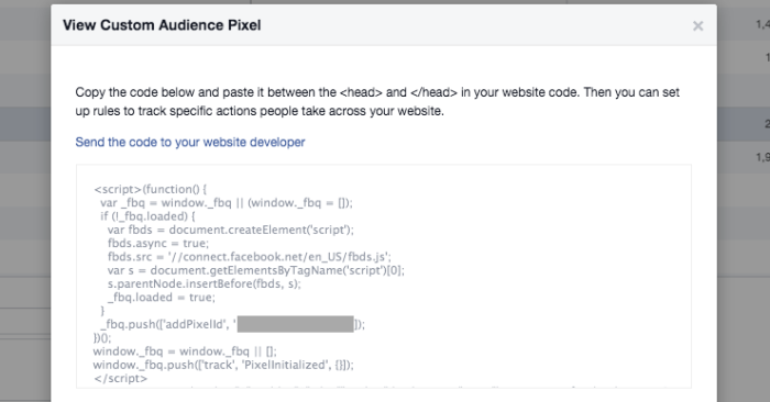 Facebook Website Custom Audience Pixel