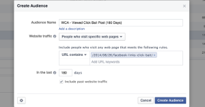 Facebook Website Custom Audience Single Page Visitor