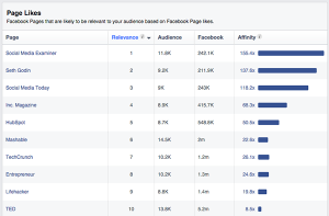 Copyblogger Audience Insights Page Likes