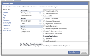 Facebook Ad Reports Conversion Types