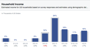 Facebook Audience Insights Income